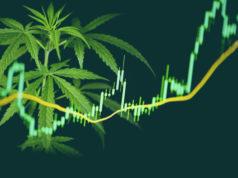 Marijuana Stock 2021 - Post Pandemic Guide