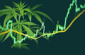 Marijuana Stock 2021 - Post Pandemic Guide